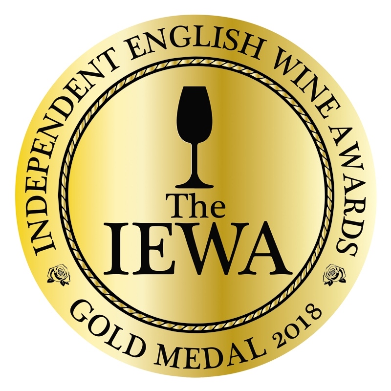 2018_THE_IEWA_MEDAL_OBVERSE_SIDE_GOLD